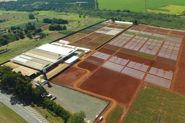 NUEVA ÁREA DE INVESTIGACIÓN AMPLIARÁ LAS ACTIVIDADES DE I+D DE AGRISTAR DO BRASIL