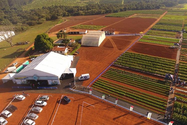 AGRISTAR DO BRASIL APRESENTA NOVIDADES DURANTE OPEN FIELD DAY E HORTITEC