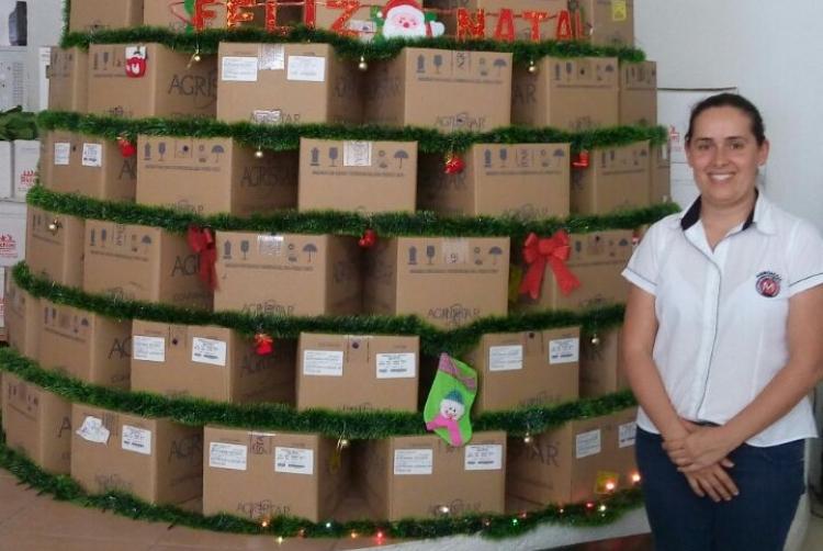 Árvore de Natal montada com caixas de embarque da Agristar