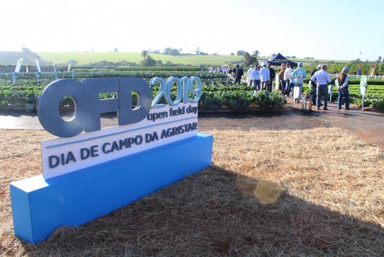 Dia de Campo da Agristar é referência para horticultores de todo o Brasil