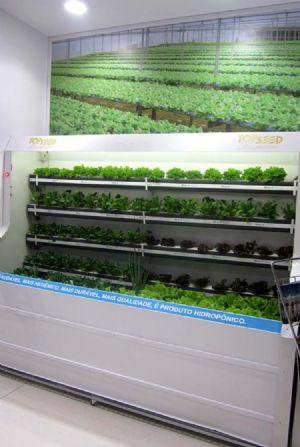 Estande Topseed Premium- Hidroponia