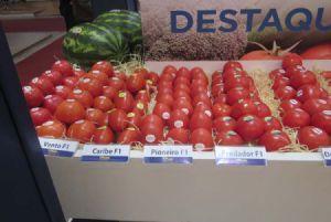 Estande Topseed Premium - Produtos em Destaque