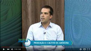 Canal Terra Viva - Produ��o e Cultivo de Ab�bora