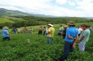 Fenata lança plataforma digital gratuita Emprego Agrícola