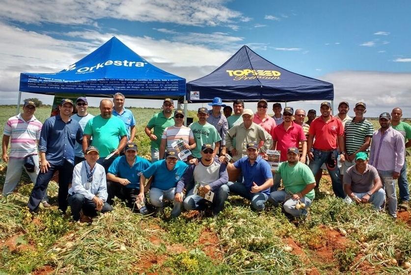 Dia de Campo sobre cebolas híbridas é realizado em João Dourado (BA)
