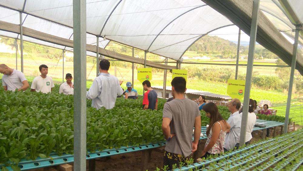 Dia de Campo em Biritiba Mirim (SP)