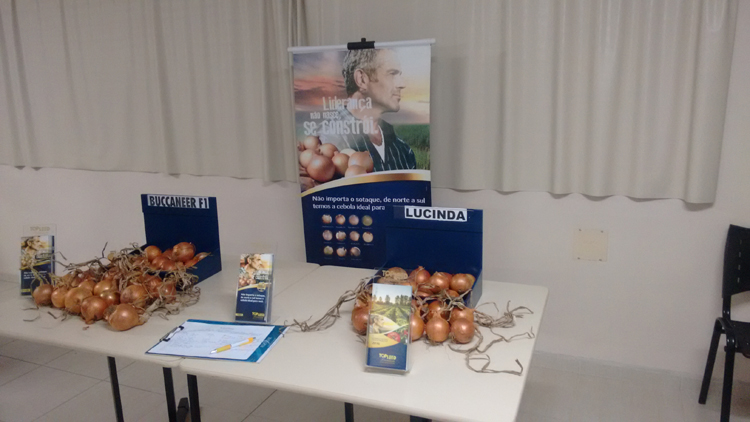 Topseed Premium fala de cebolas híbridas em Guarapuava (PR)