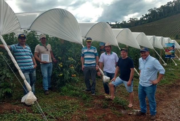 Topseed Premium visita lavoura de Itaipava F1 em Flores da Cunha (RS)