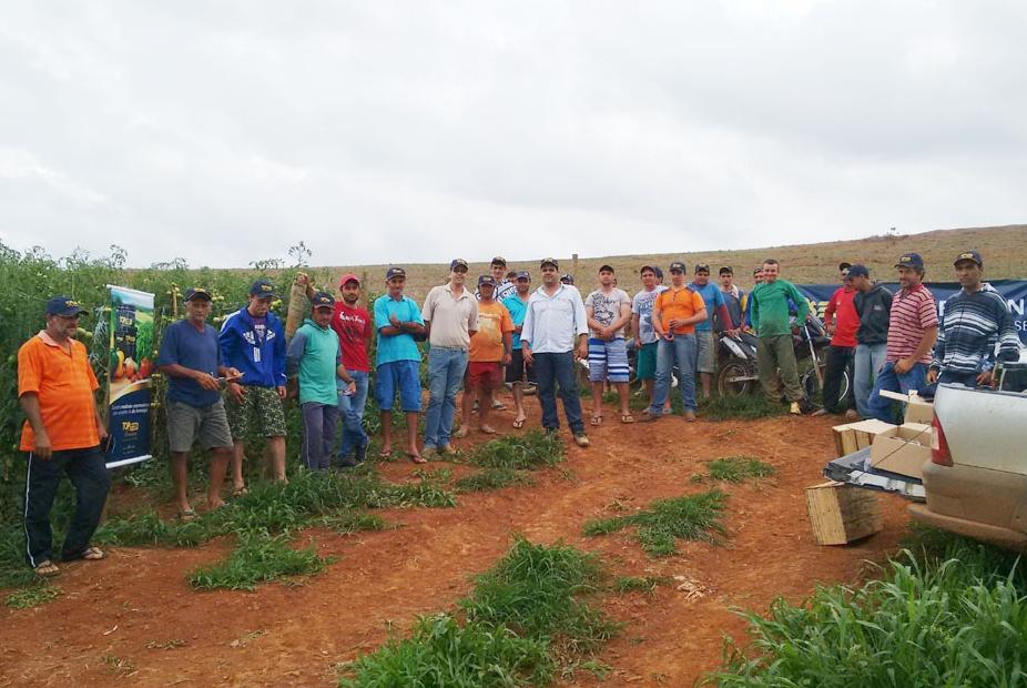 Dia de Campo sobre tomate Vento F1 em Lagoa Dourada (MG)