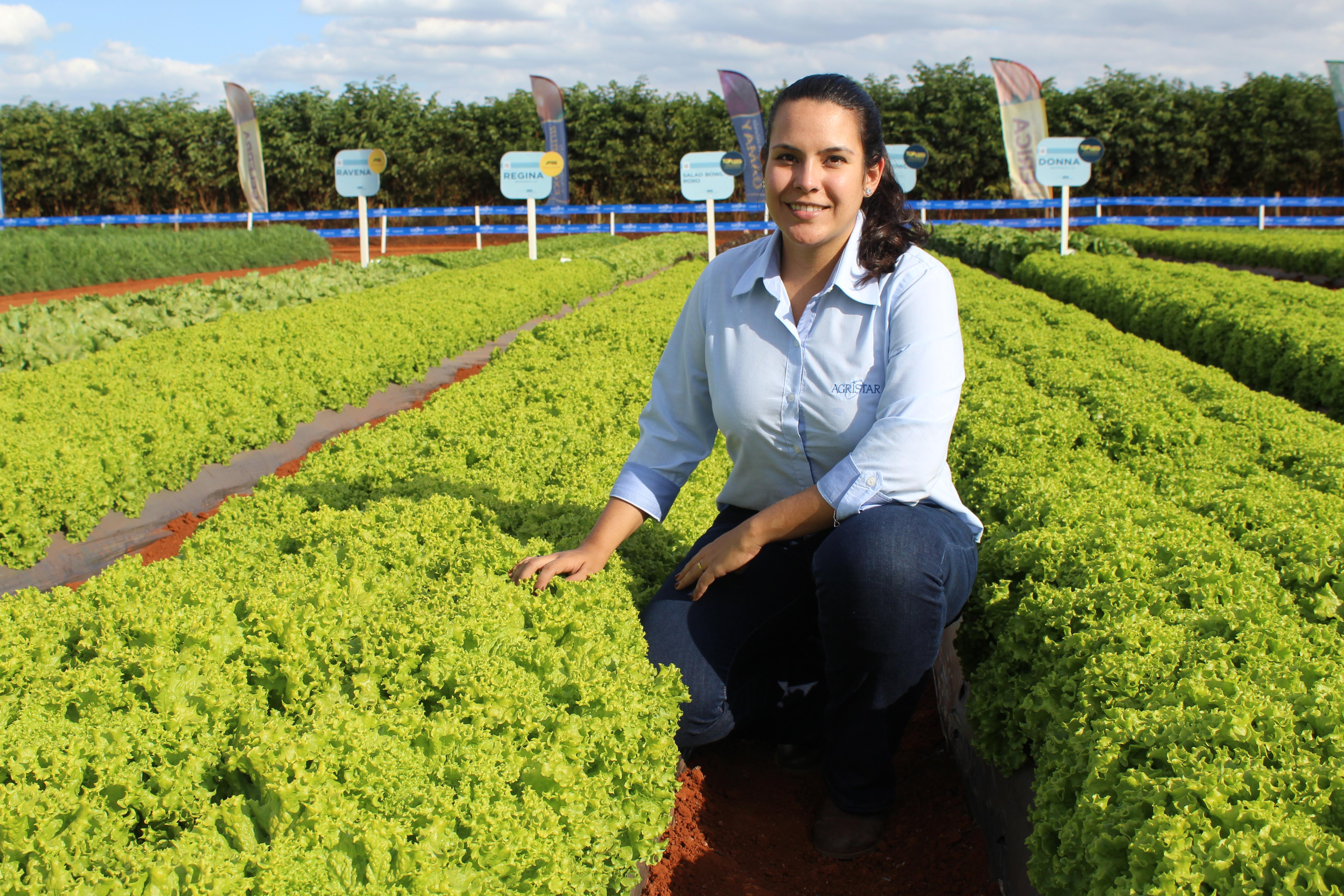 Agristar do Brasil cria programa de melhoramento de alfaces e contrata pesquisadora