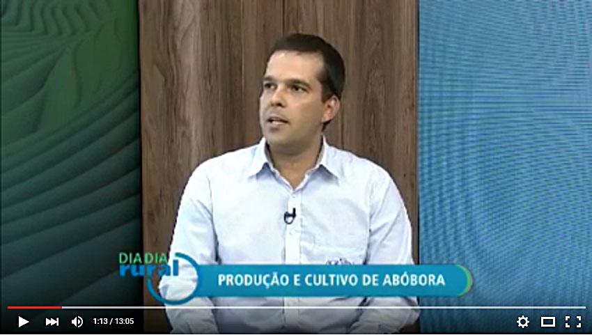 Canal Terra Viva - Produção e Cultivo de Abóbora