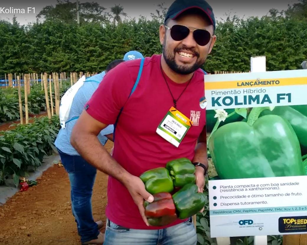 Depoimento pimentão Kolima F1