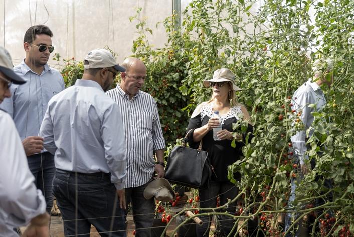 Dia de Campo da Agristar tem números recorde de visitantes durante a Hortitec