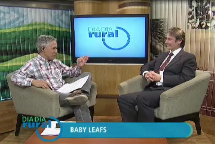 Dia Dia Rural: Presidente da ABCSEM fala sobre Baby Leafs e Mini-Hortaliças