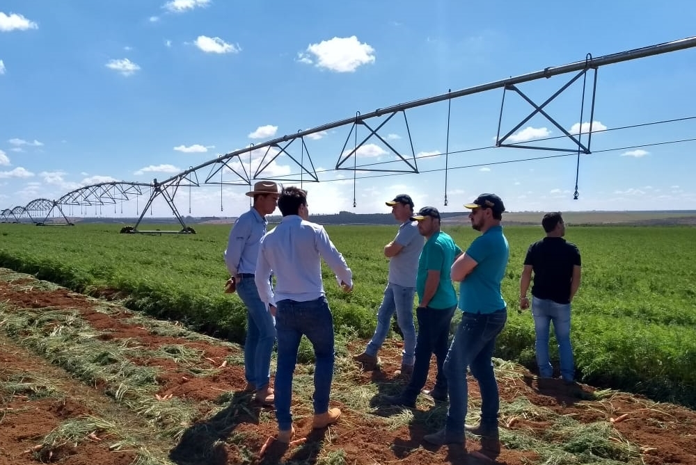 Equipe Topseed Premium faz visita técnica a campos de cenoura de São Gotardo (MG)