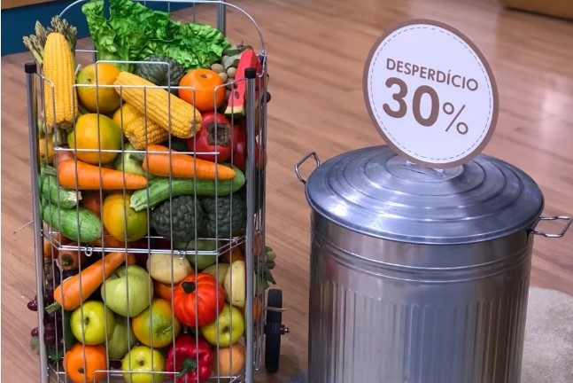 Frutas, legumes e verduras são os alimentos que mais vão para o lixo