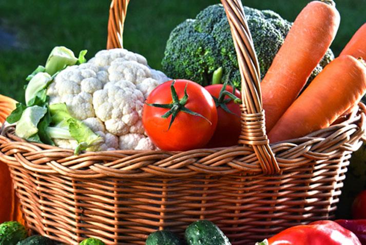 Topseed Premium apresenta ao mercado de horticultura novas variedades