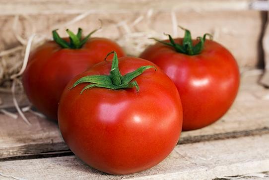 Linha de sementes Superseed lança novidades para o mercado de horticultura