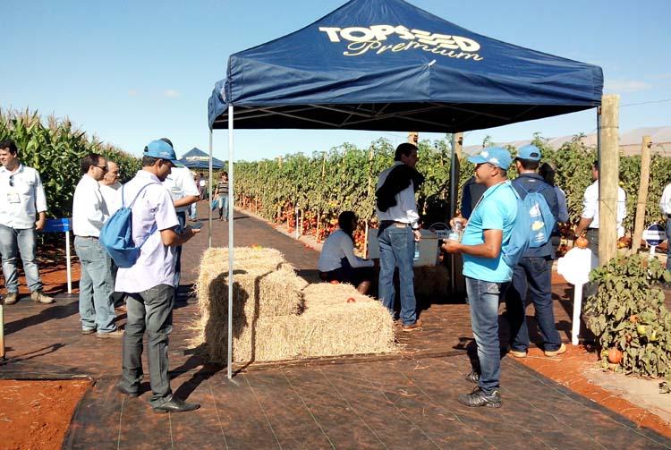 No mesmo período da Hortitec foi realizado o Open Field Day, Dia de Campo da Agristar