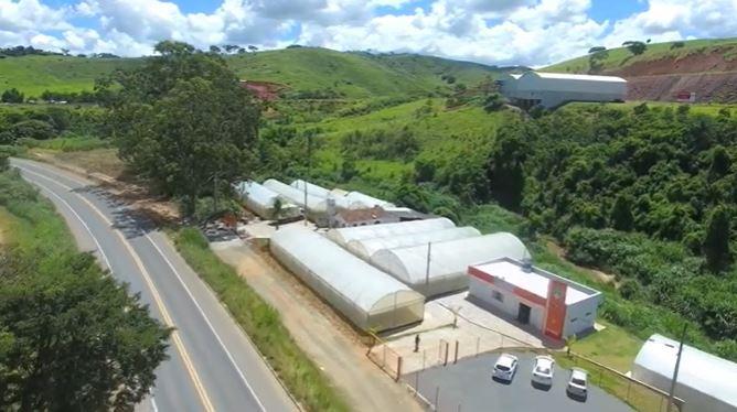 Praxedes comemora 25 anos de atuação no mercado de sementes
