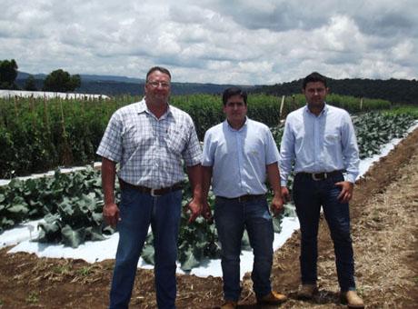 Topseed Premium amplia equipe comercial no Paraná