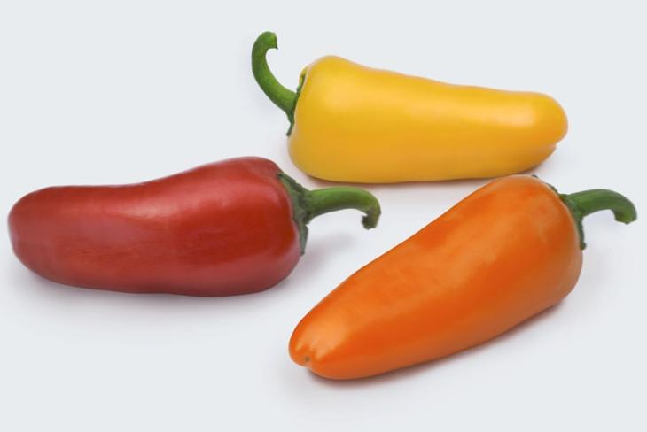 Topseed Premium lança mini pimentões diferenciados em cores, formatos e sabores