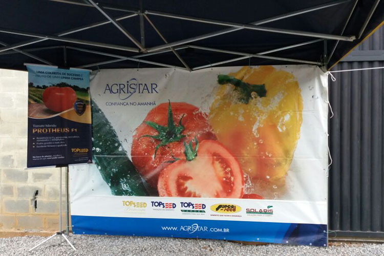 Topseed Premium promove palestra sobre o tomate Protheus F1