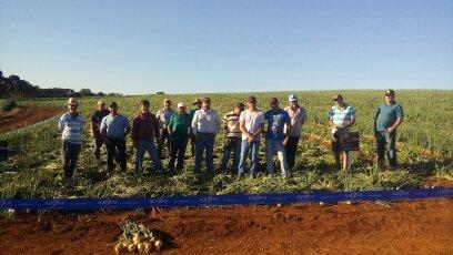 Dia de Campo sobre a cebola Soberana em Irati (PR)