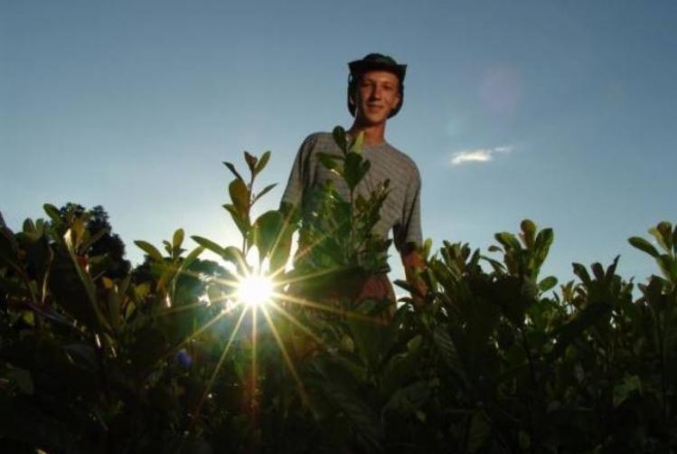 Pesquisa mostra maior participação de jovens no agronegócio