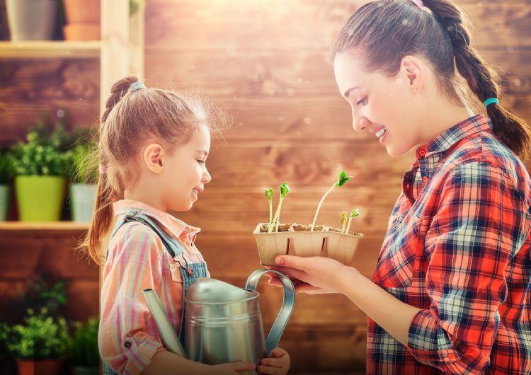 """Topseed Garden cria campanha para seus novos envelopes de sementes das linhas """"Tradicional"""" e """"Blue Line"""""""