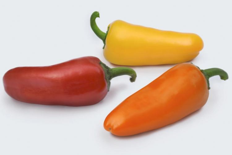 Topseed Premium lan�a mini piment�es diferenciados em cores, formatos e sabores