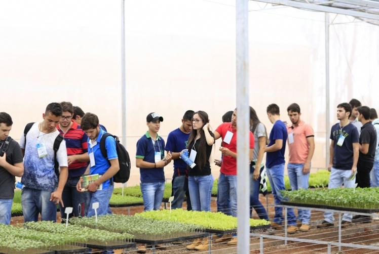Topseed Premium participa do 1º Encontro Técnico de Hortifruti do viveiro Mudas Valoriza