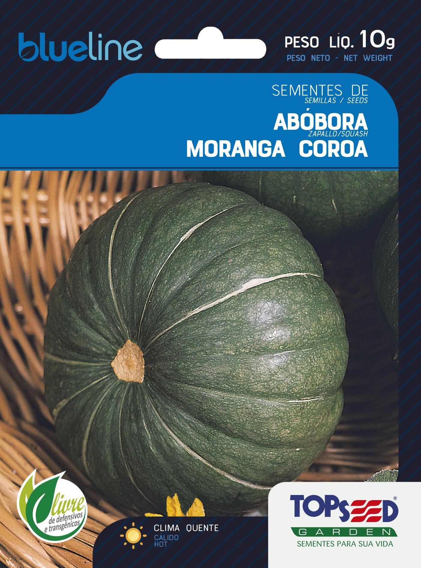ABÓBORA MORANGA COROA