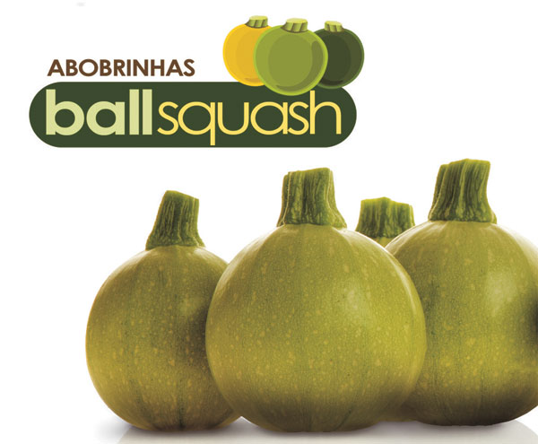 BALLSQUASH CUE BALL F1