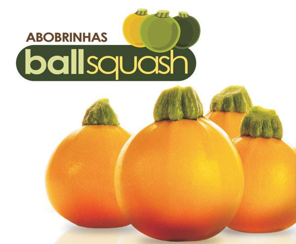 BALLSQUASH ONE BALL F1
