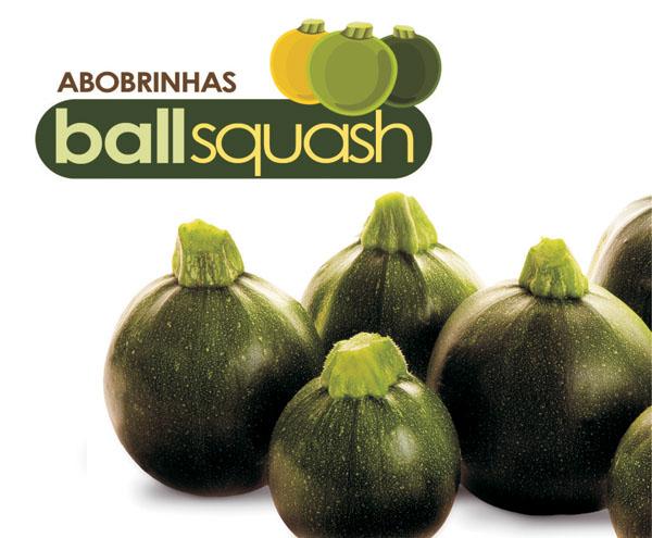BALLSQUASH EIGHT BALL F1