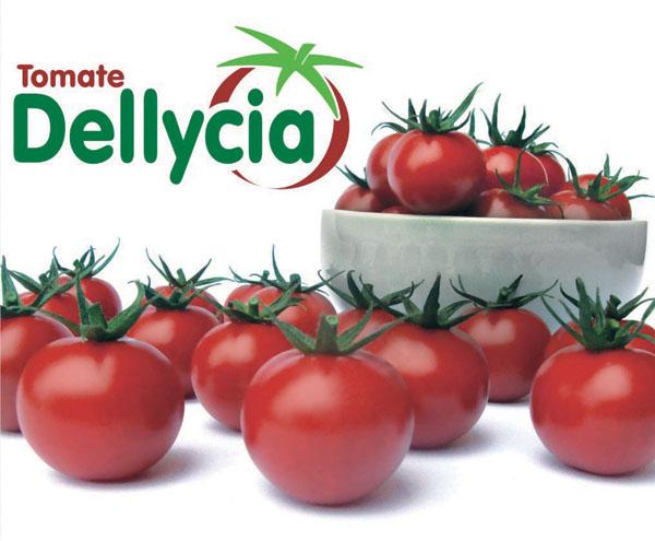 DELLYCIA F1