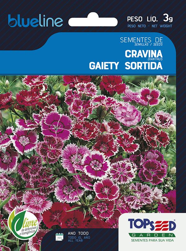 CRAVINA GAIETY SORTIDA