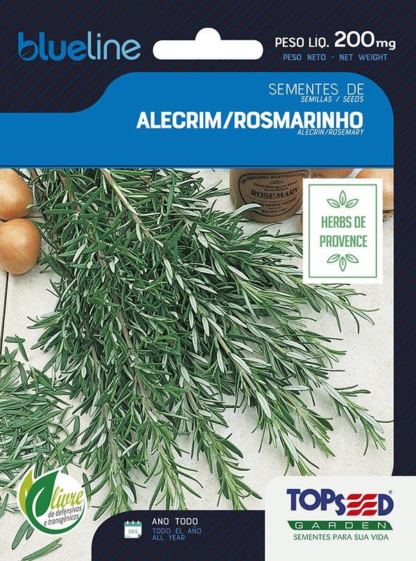 ALECRIM/ROSMARINHO
