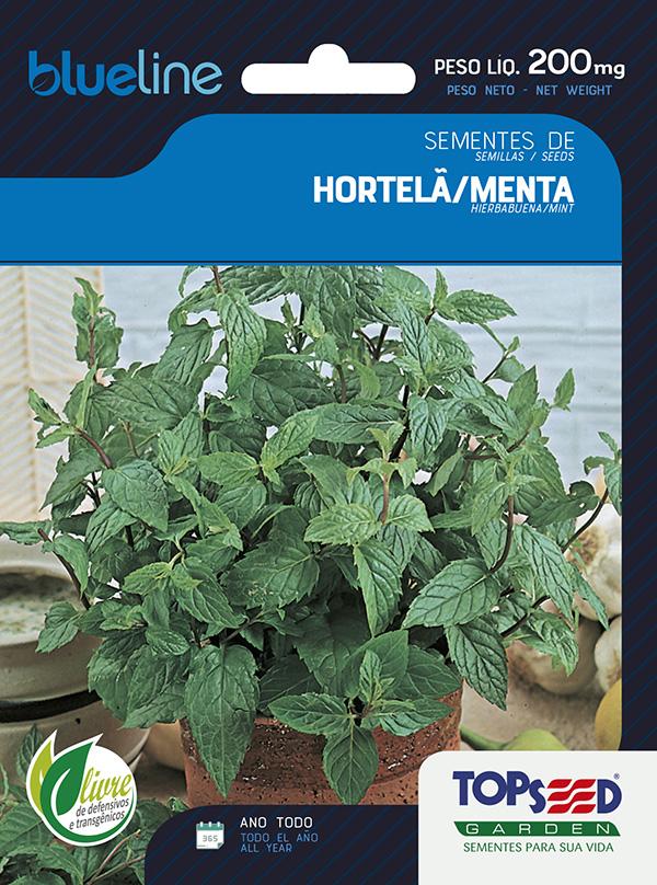 HORTELÃ/MENTA
