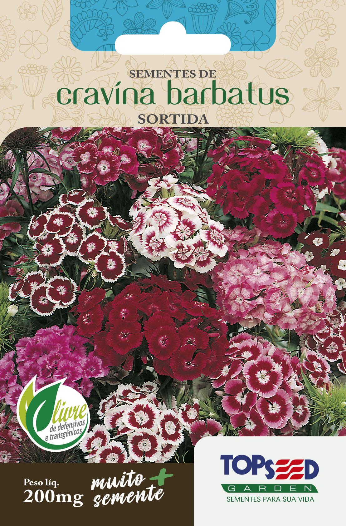 CRAVINA BARBATUS SORTIDA