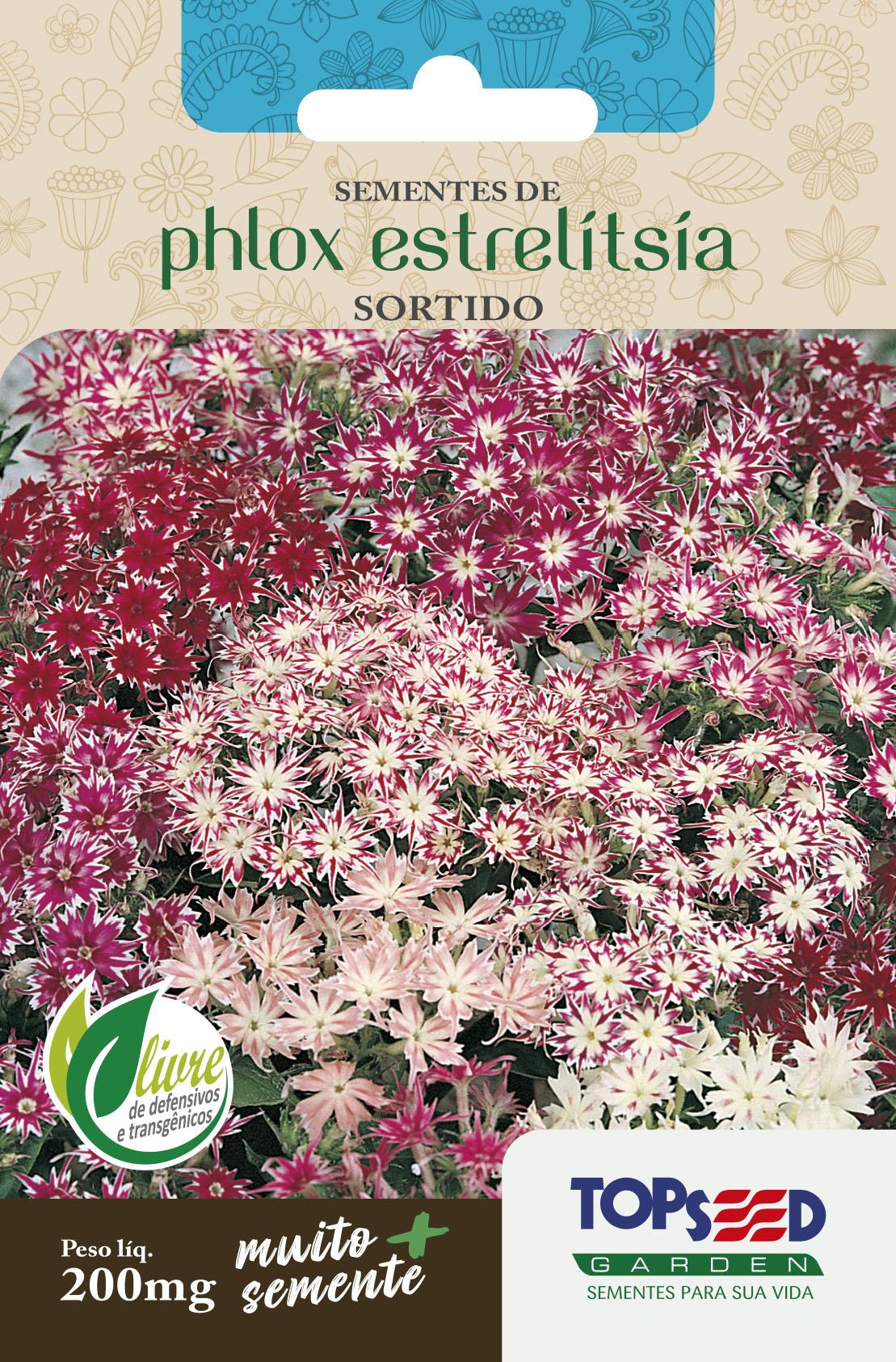 PHLOX ESTRELITSIA SORTIDO