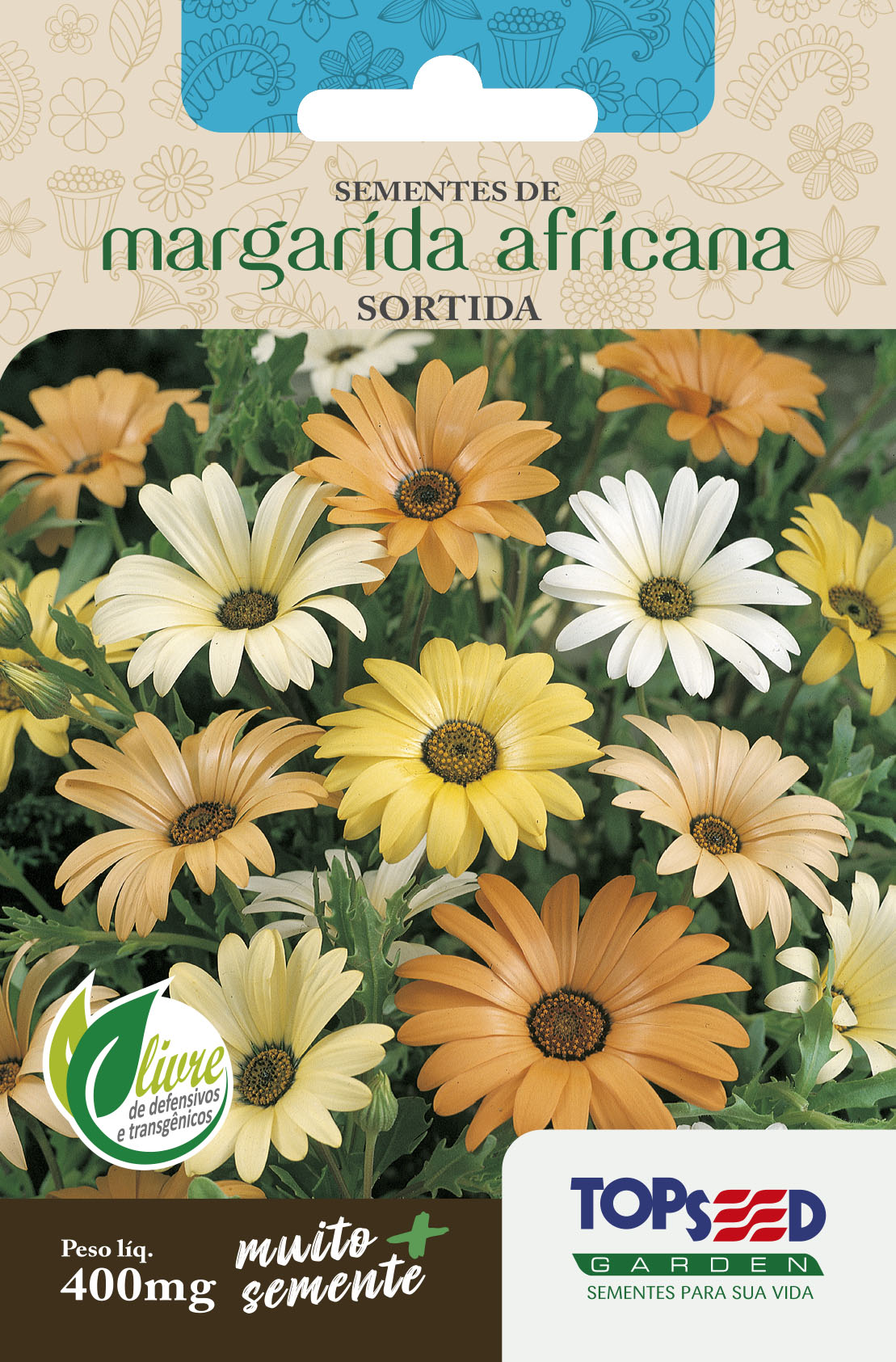 MARGARIDA AFRICANA SORTIDA