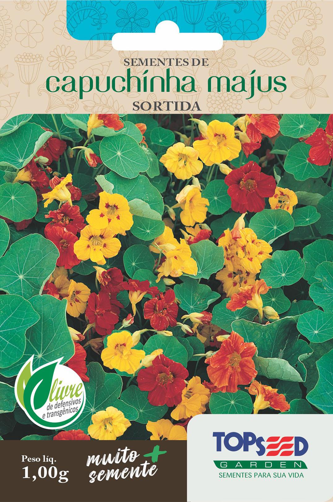 CAPUCHINHA SIMPLES SORTIDA