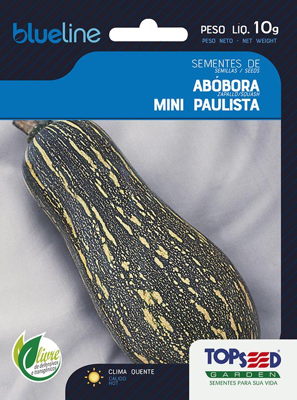 ABÓBORA MINI PAULISTA