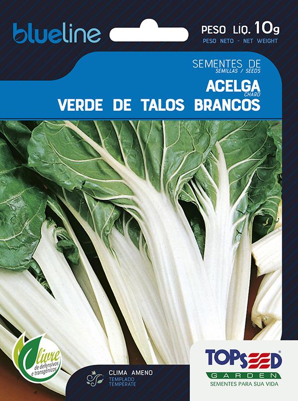 ACELGA VERDE DE TALOS BRANCOS