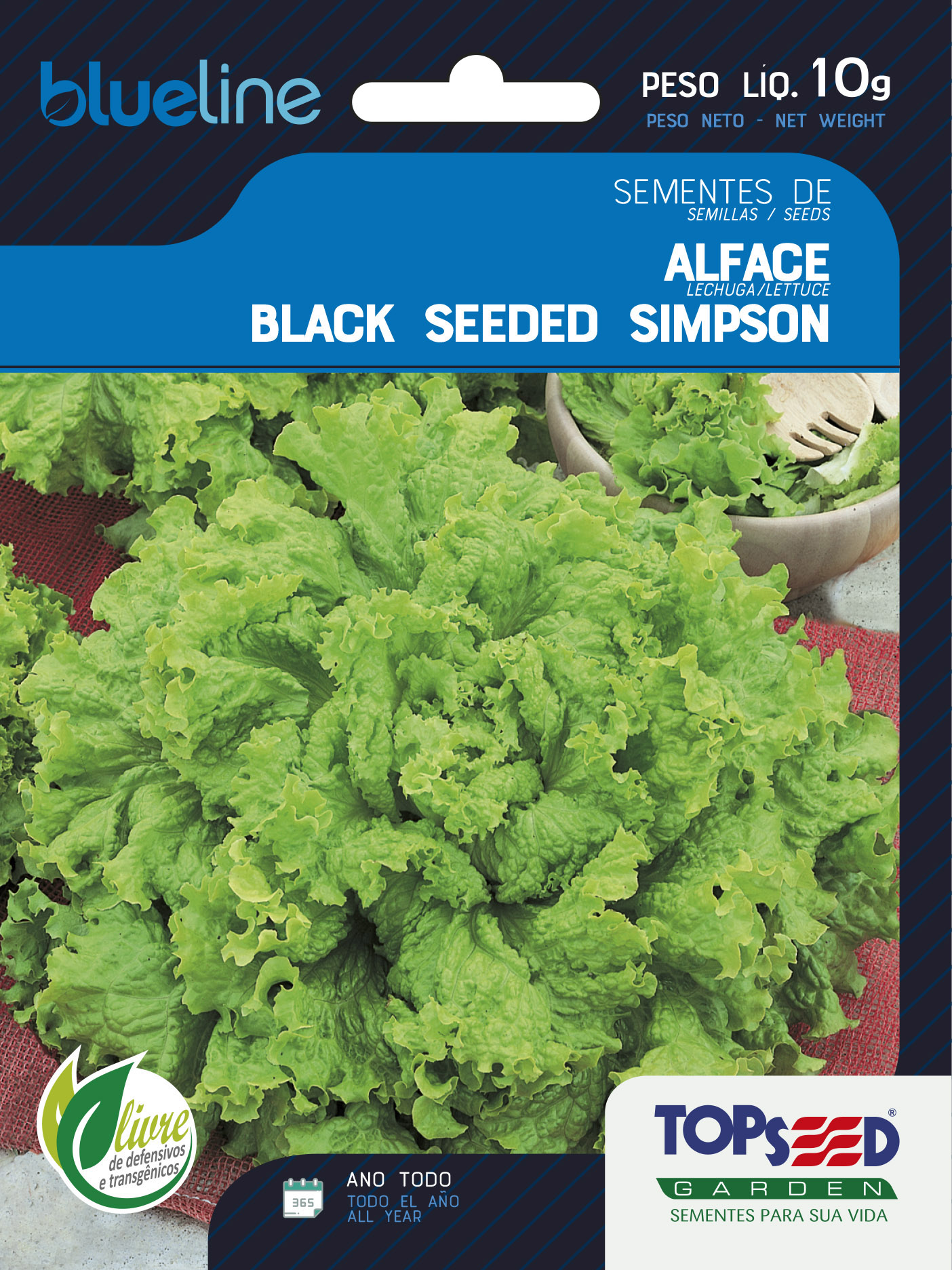 ALFACE BLACK SEEDED SIMPSON