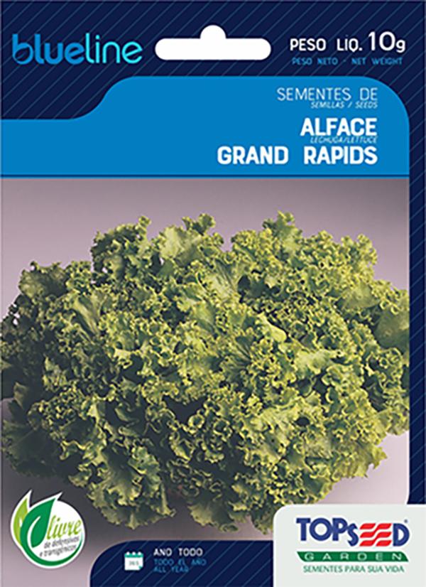ALFACE GRAND RAPIDS TBR