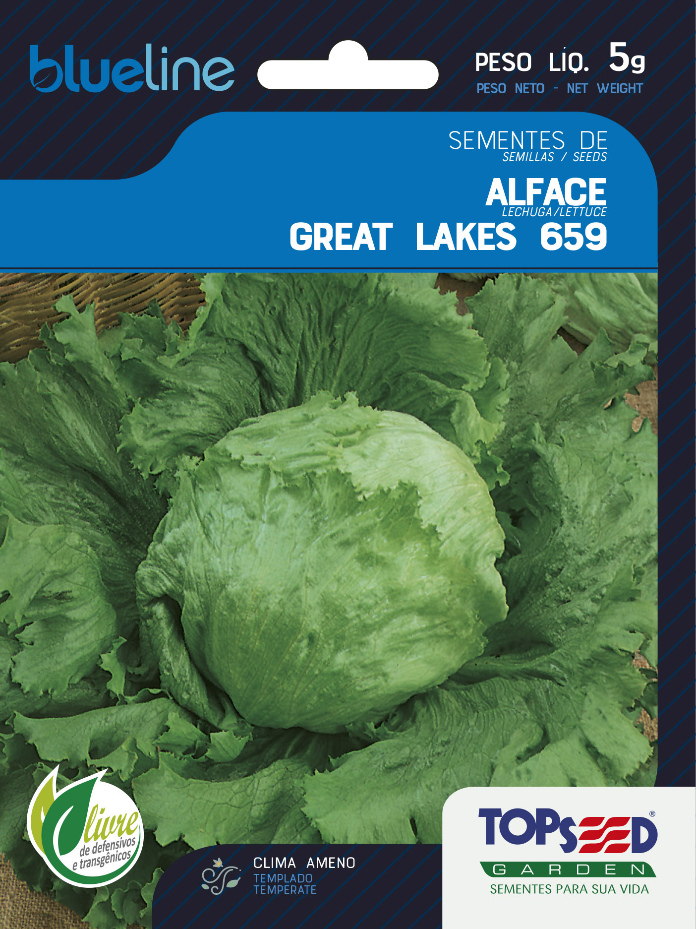 ALFACE GREAT LAKES 659 (AMERICANA)