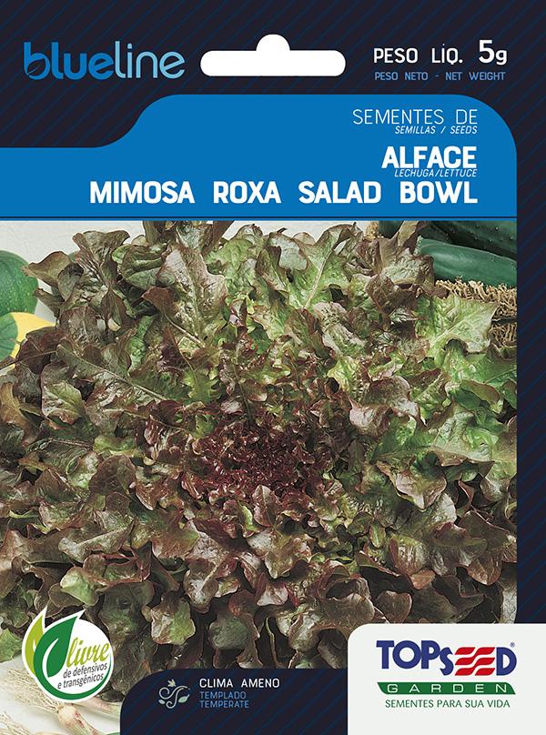 ALFACE MIMOSA SALAD BOWL ROXA